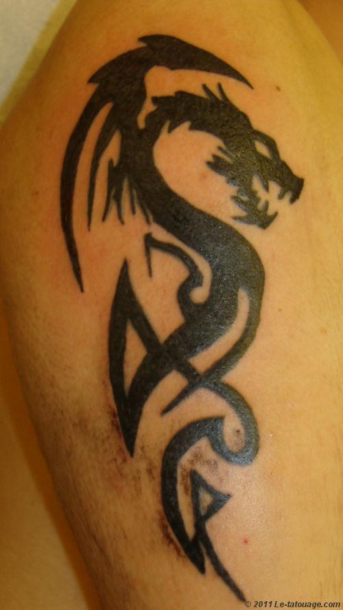 tatouage tribal homme dragon