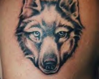 tatouage tribal loup signification